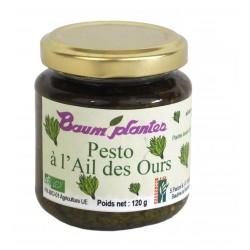 Pesto à l'ail des ours - Baum Plantes